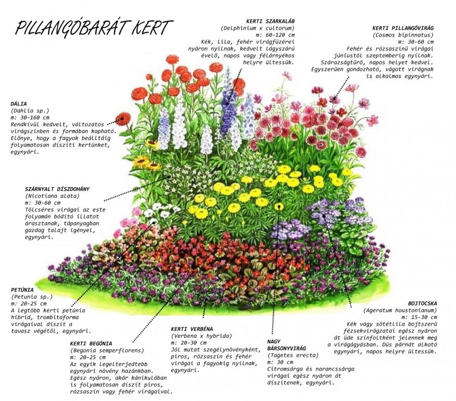 Kertészkedjünk együtt! 2. rész
