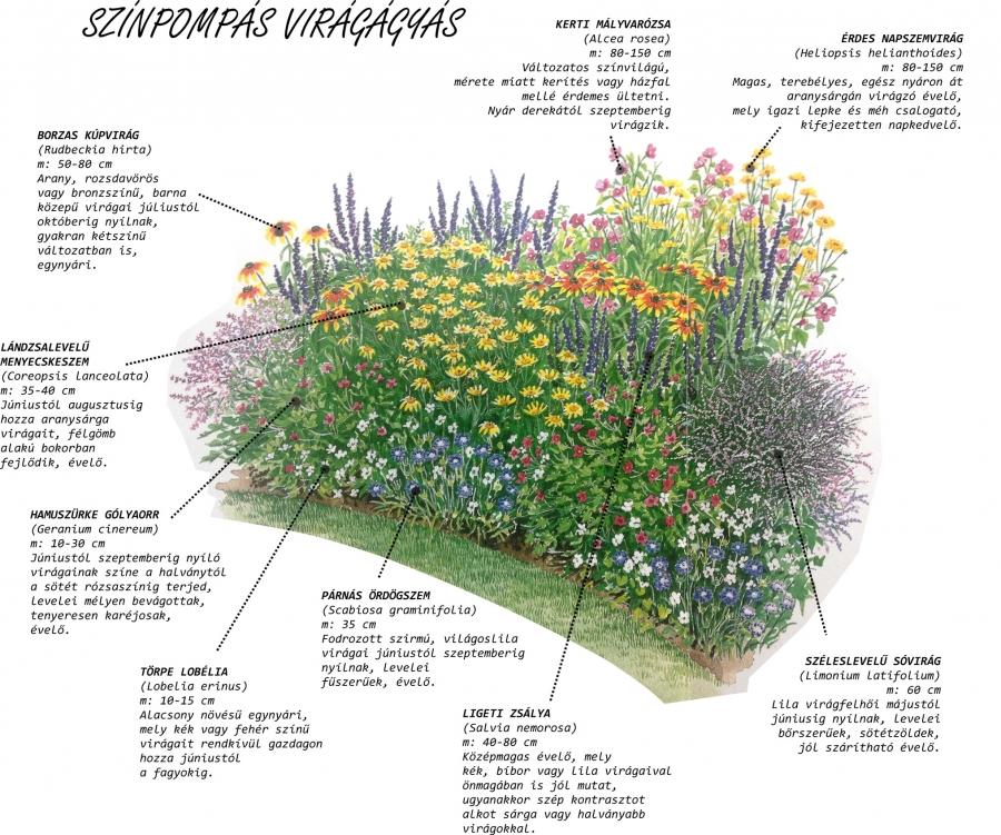 Kertészkedjünk együtt! 3. rész