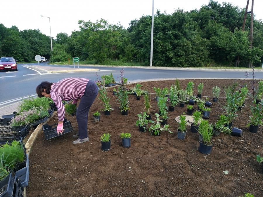 Természetközeli kertstílus az élhetőbb városért