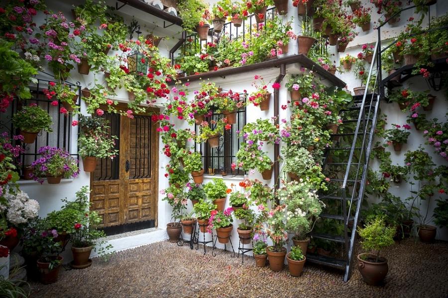 Teraszok, balkonok, ablakok virágozzatok!