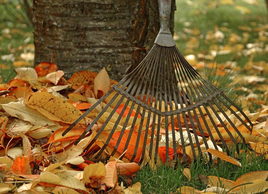 Munkára hív az őszi kert!