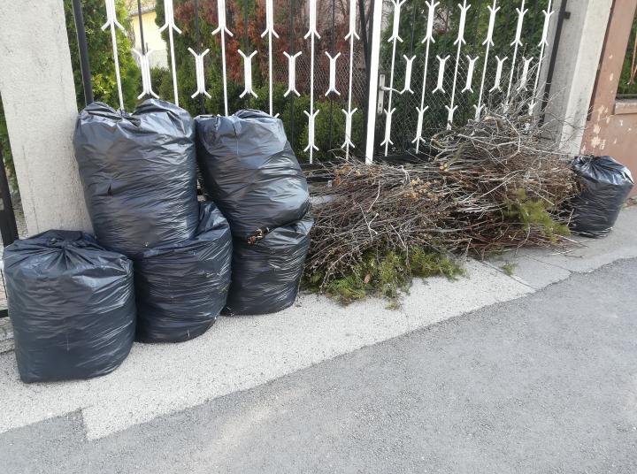 Novemberben indul a házhoz menő zöldhulladék gyűjtés